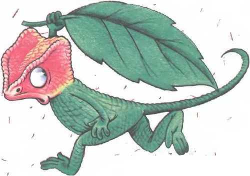 Christopher Chameleon