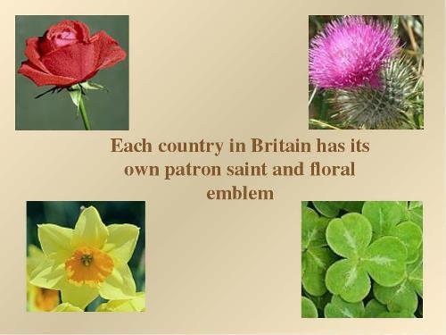 British floral symbols