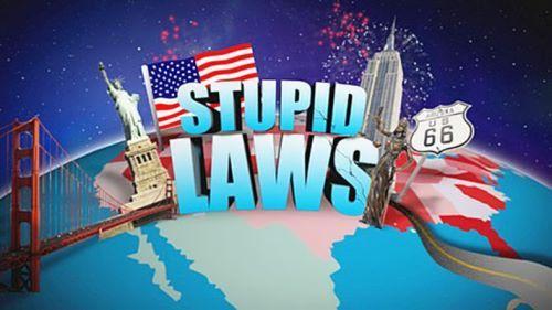 Dumb laws